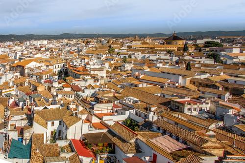 Cordoba rooftop, Spain - 230334207