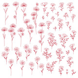 花のイラスト素材