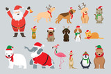Santa Claus and Animals Wearing Christmas Costume