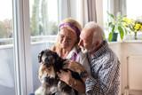 Happy senior couple with dog © Budimir Jevtic