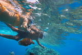 Woman at snorkeling in Red Sea, Egypt - 230467878