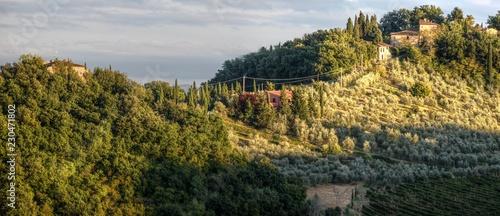 Rural landscape of Tuscany, close to Montespertoli, region of Florence