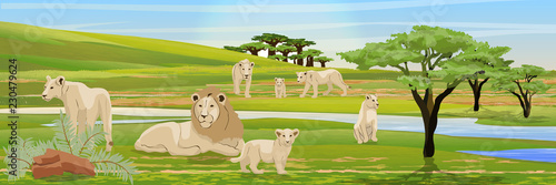 Pride of a lion, three lionesses and their cubs in the African savannah. River, baobabs and acacias, bushes of tropical plants. Wildlife of Africa. Realistic Vector Landscape