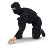 Ninja Taking Fighting Pose On White Background. 3D Illustration, isolated - 230484404