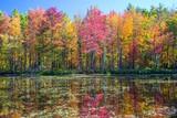 reflet d'automne