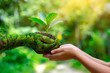 Leinwanddruck Bild - environment Earth Day In the hands of trees growing seedlings. Bokeh green Background Female hand holding tree on nature field grass Forest conservation concept