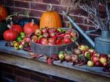 Autumn Harvest  - 230575298