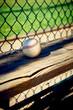 Baseball on a wooden dugout bench