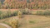 Felder - Luftbild - 230649657