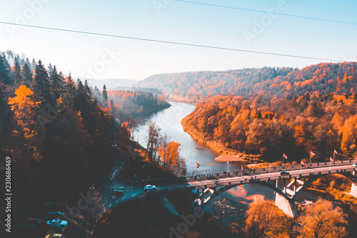 Aerial view of the Sigulda bridge and cable car over Gauja river during golden autumn season in Latvia. Amazing orange forest below.
