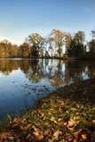 Autumn by the lake, Slivnica pri Mariboru, Slovenia - 230698097