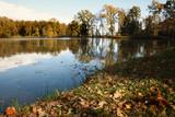 Autumn by the lake, Slivnica pri Mariboru, Slovenia - 230698249