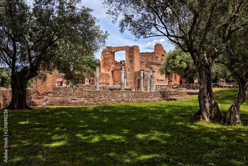 resti di un'antica villa romana in mezzo a ulivi secolari