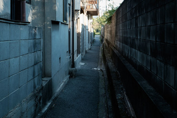 路地 © 敏夫 杉浦
