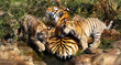 tiger wih two babies