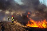 Firefighters battle a wildfire - 230774447