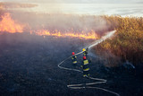 Firefighters battle a wildfire - 230775650