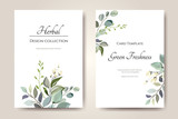 Set of card with herbs, leaves.  Floral poster, invite. Vector decorative greeting card or invitation design background - 230776447