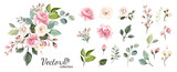 Set of floral branch. Flower pink rose, green leaves. Wedding concept with flowers. Floral poster, invite. Vector arrangements for greeting card or invitation design - 230776686
