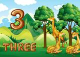 Three giraffe in nature - 230793404
