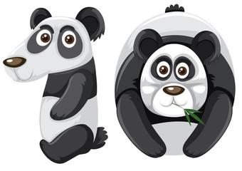 Number ten with panda character © GraphicsRF
