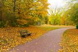Bank im Park im Herbst - 230818003