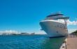 Leinwanddruck Bild - cruise ship in the port of Copenhagen