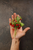 Fresh wild strawberry on hand - 230867204