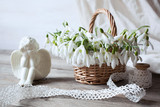 Snowdrops in a basket on a wooden table