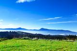 Carpathian mountain sunny landscape - 230884499