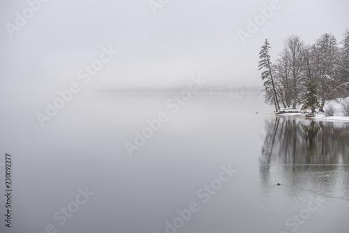 Wall mural Winter lake covered in fog