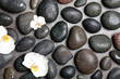 Leinwanddruck Bild Flat lay composition with spa stones and beautiful flowers on grey background