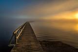into the fog - 230928484