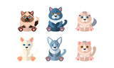 Different cute cats set, cartoon animals pets sitting vector Illustration on a white background