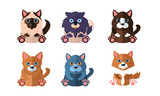 Cats of different breeds set, cute cartoon animals pets sitting vector Illustration on a white background