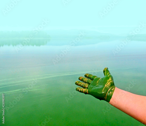 Human hand polluted and green harmful substance. Water pollution by blooming blue-green algae (Cyanobacteria) is world environmental problem. - 230983817