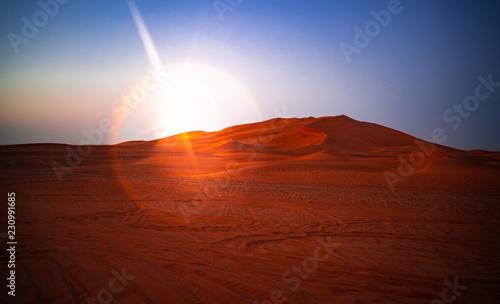 Desert at sunset. Sand dune in the desert. - 230991685