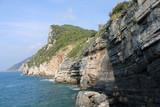 Stratificazione rocciosa della scogliera con falesia e bosco sul mare