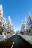 Einsame Straße im verschneiten Wald