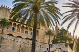 The Cathedral of Saint Mary of Palma de Mallorca - 231018442