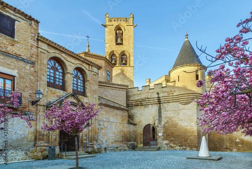 Leinwandbild Motiv Palace of the Kings of Navarre, Olite, Spain