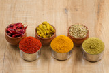 indian spices isolated on wooden background. - 231038695