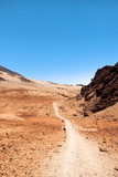 Trail in the Montana Blanca, at the foot of the Teide volcano, Tenerife, Canary Islands, Spain - 231041621