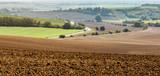 Landscape of Moravian fields - 231074812