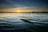 Beautiful, colorful sunset with a textured log in the water on the foreground.
