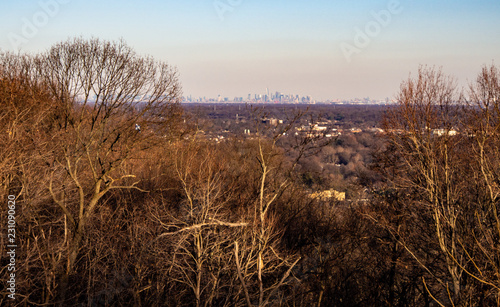 Foto Murales New York City in the distance