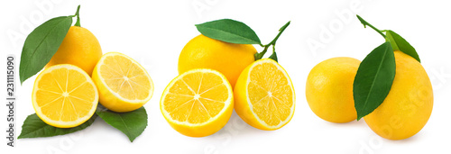 Lemon isolated on white - 231115090