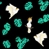 Seamless pattern, background with tropical birds - 231134837