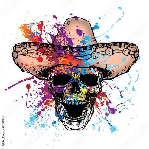 Цветной череп, изолированных на белом фоне - 231135245