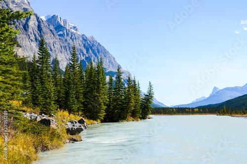 秋のカナディアンロッキー 紅葉(黄葉)のノース・サスカチュワン川(バンフ国立公園 カナダ・アルバータ州)